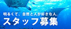 石垣島スタッフ募集